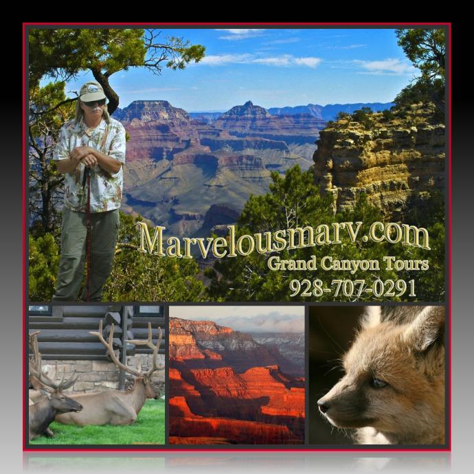 Marvelous Marv collage