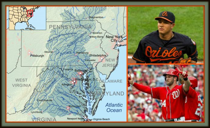 Episode 349 - Chesapeake Bay Baseball